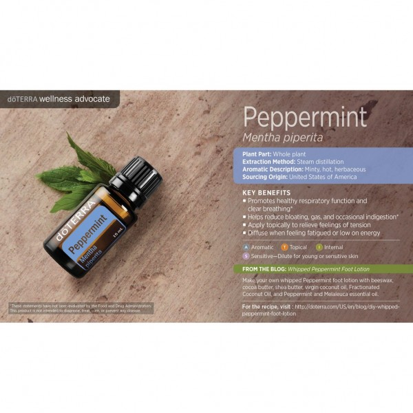 15ml Peppermint Essential Oil